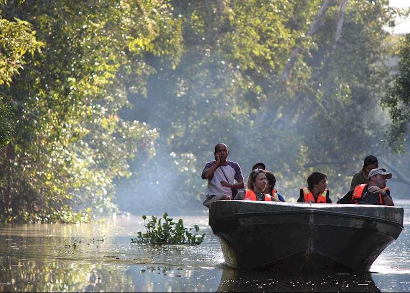 Kinabatangan river cruises