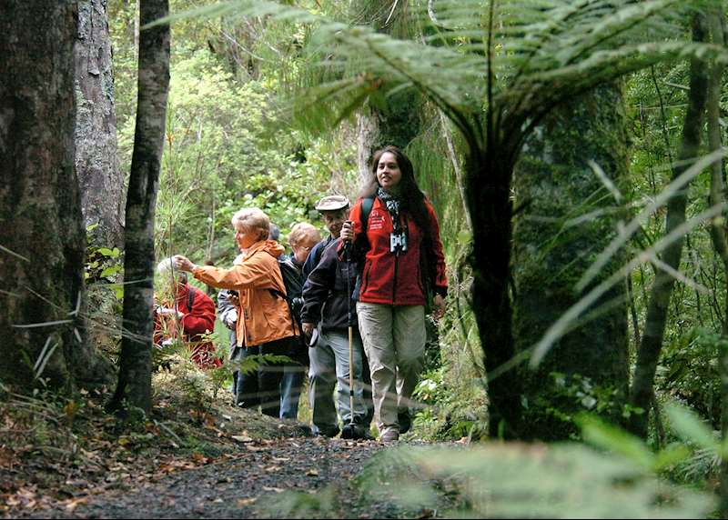 Ask the experts: where to go walking and trekking in New Zealand