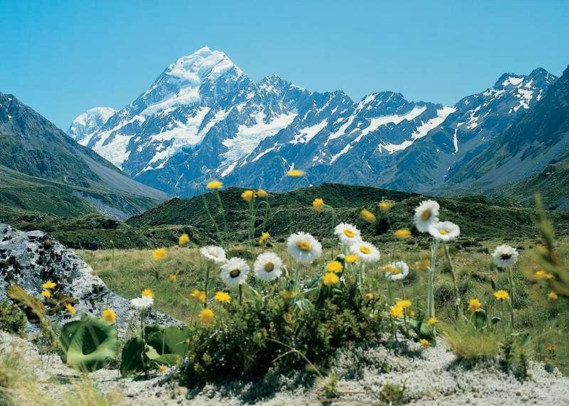 Honeymoons in New Zealand