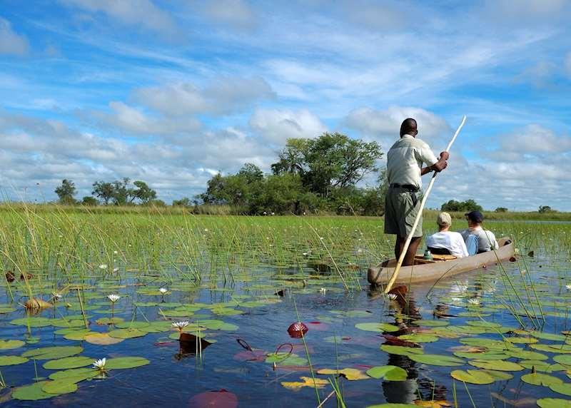 Honeymoons in Botswana