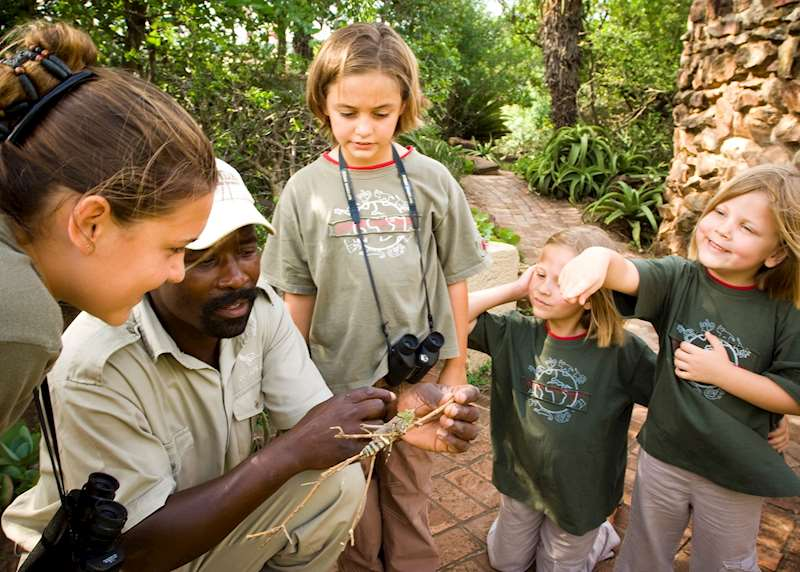 Family safaris in South Africa