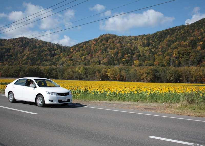 Driving in Japan: Hokkaido Island