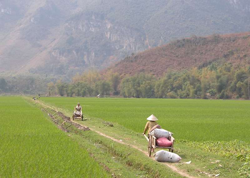 What to do in Vietnam: our highlights guide