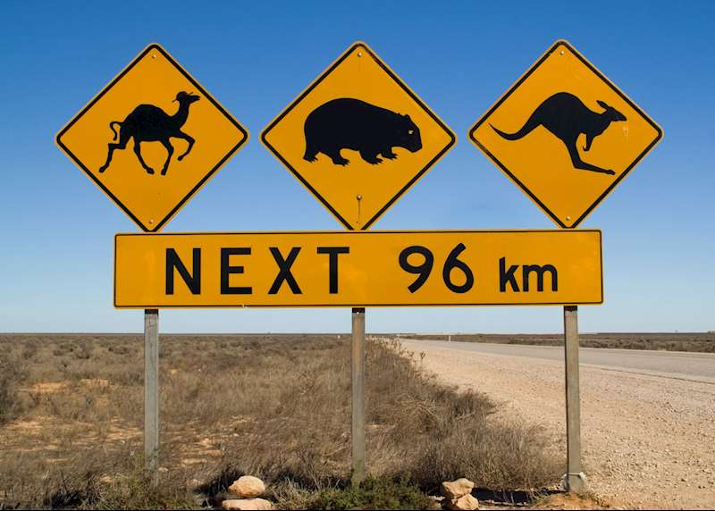Driving vacations in Australia: beyond the Great Ocean Road
