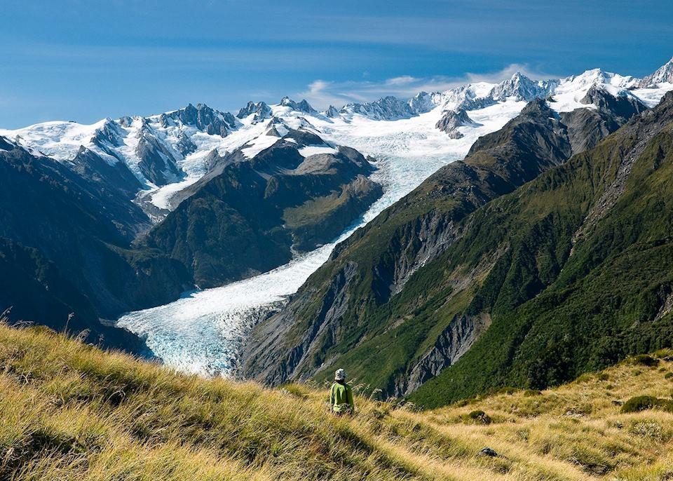 fox glacier terminal face self guided walk